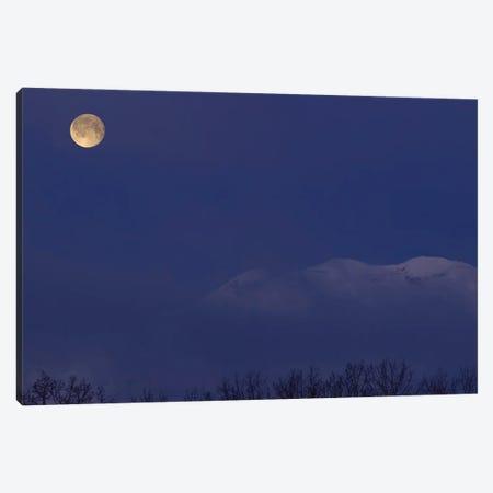 Moon At Dawn Canvas Print #YUT19} by Yuichi Takasaka Canvas Wall Art