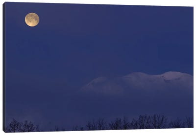 Moon At Dawn Canvas Art Print