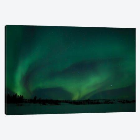 Active Aurora Over Vee Lake, Yellowknife, Northwest Territories, Canada. Canvas Print #YUT1} by Yuichi Takasaka Canvas Wall Art