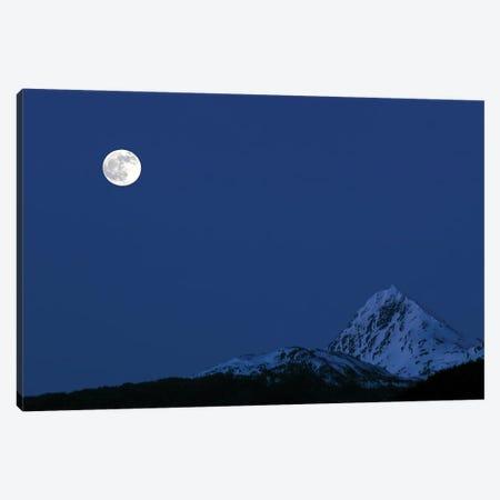 Moonrise Canvas Print #YUT22} by Yuichi Takasaka Canvas Art Print