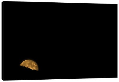 Moonrise Canvas Art Print