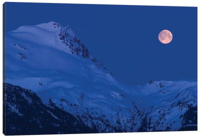 Moonset Canvas Art Print