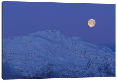 Moonset At Dawn. Canvas Art Print
