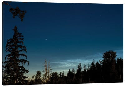 Noctilucent Coluds Canvas Art Print
