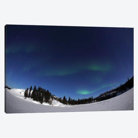 Aurora Over Vee Lake, Yellowknife, Northwest Territories, Canada. Canvas Print #YUT7} by Yuichi Takasaka Art Print