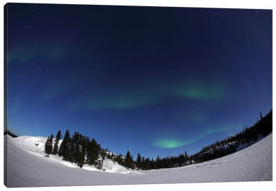 Aurora Over Vee Lake, Yellowknife, Northwest Territories, Canada. Canvas Art Print