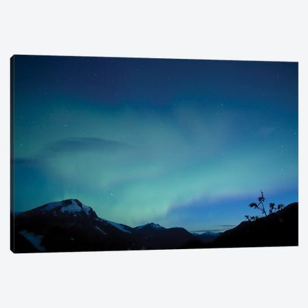 Aurora, Salmon Glacier, British Columbia, Canada. Canvas Print #YUT9} by Yuichi Takasaka Canvas Art