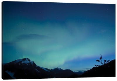 Aurora, Salmon Glacier, British Columbia, Canada. Canvas Art Print