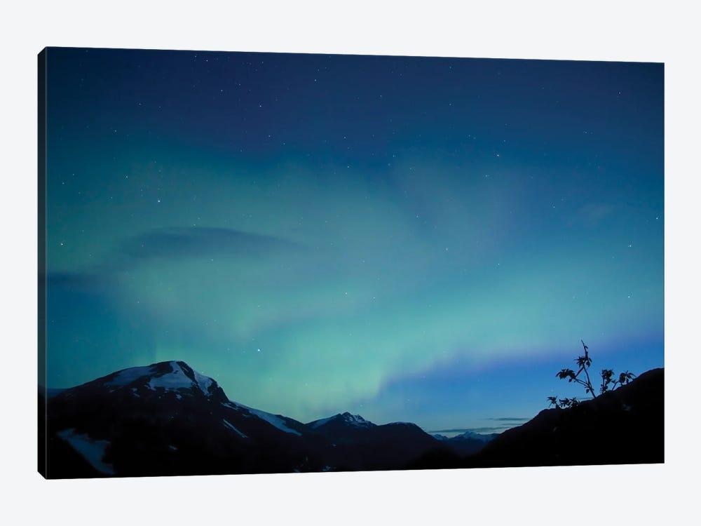 Aurora, Salmon Glacier, British Columbia, Canada. by Yuichi Takasaka 1-piece Canvas Artwork