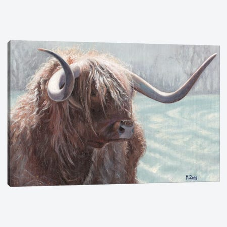Highland Bull Canvas Print #YZG13} by Yue Zeng Canvas Print