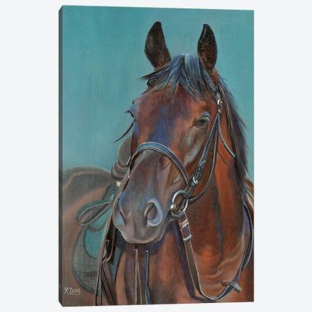 Horse Portrait Canvas Print #YZG14} by Yue Zeng Canvas Art