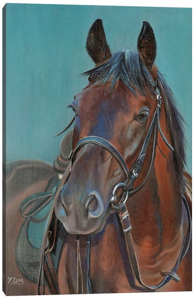 Horse Portrait Canvas Art Print