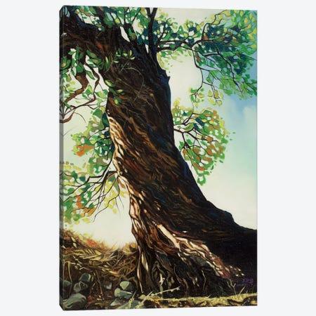 Big Tree Canvas Print #YZG19} by Yue Zeng Canvas Print