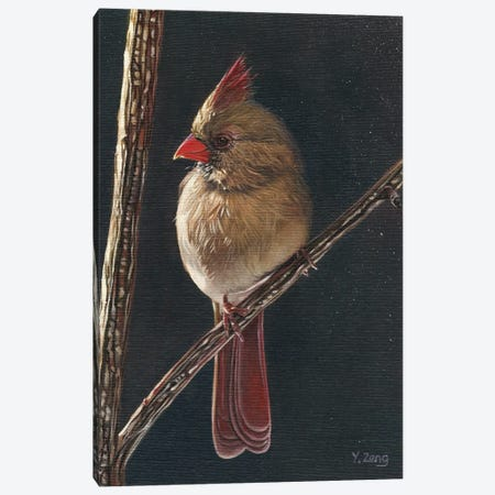 Female Cardinal Bird Canvas Print #YZG20} by Yue Zeng Canvas Artwork