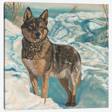 German Shepherd In Snow Field Canvas Print #YZG25} by Yue Zeng Canvas Art Print