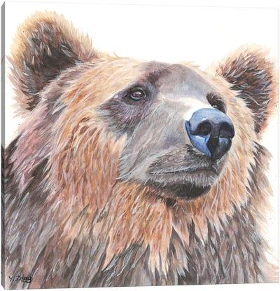 Grizzly Bear Portrait Canvas Art Print