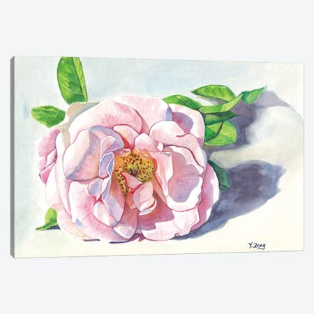 Single Pink Rose Canvas Print #YZG31} by Yue Zeng Canvas Art Print