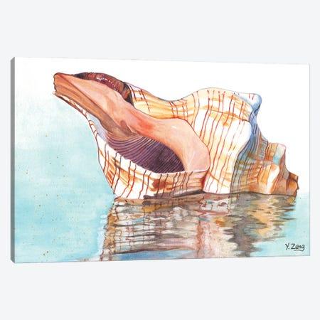 Seashell Canvas Print #YZG33} by Yue Zeng Canvas Art Print