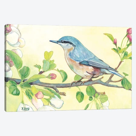Spring Bird Canvas Print #YZG34} by Yue Zeng Canvas Artwork