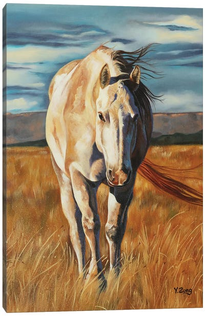 Horse Home Coming Canvas Art Print