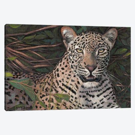 Leopard Canvas Print #YZG37} by Yue Zeng Canvas Art