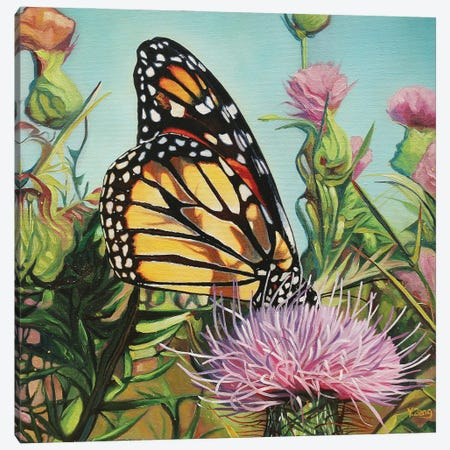 Monarch Butterfly Canvas Print #YZG38} by Yue Zeng Canvas Art Print