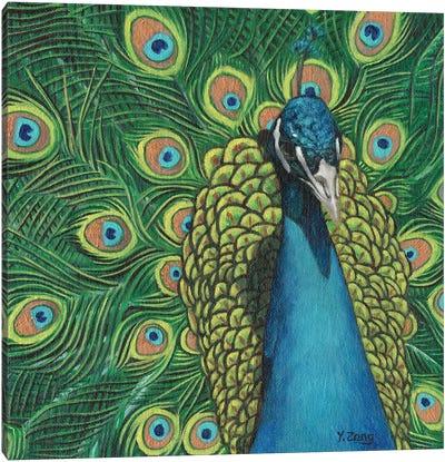 Peacock Bird Canvas Art Print