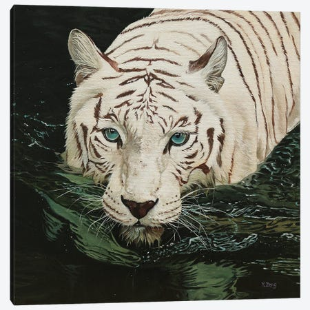 White Tiger In Black Water Canvas Print #YZG44} by Yue Zeng Canvas Art Print