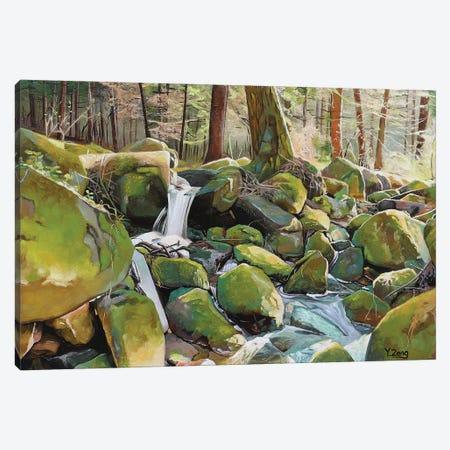 Creek Rocks Canvas Print #YZG46} by Yue Zeng Canvas Print