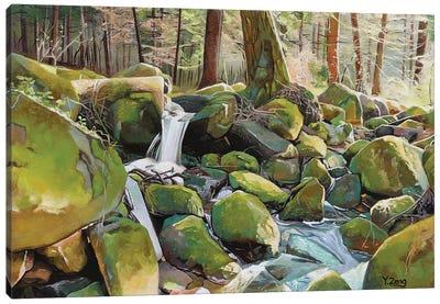 Creek Rocks Canvas Art Print