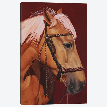 Horse Profile Canvas Print #YZG48} by Yue Zeng Canvas Artwork