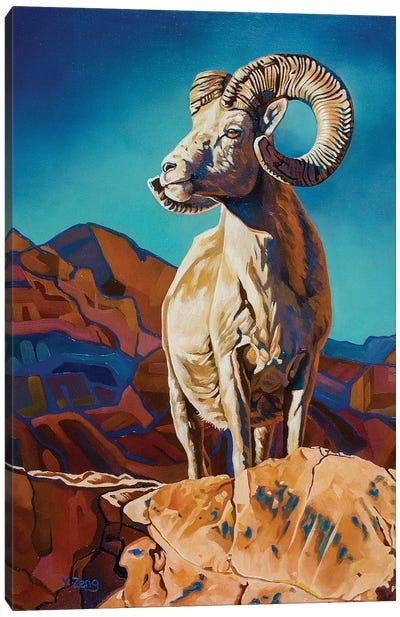 Mountain Pride Big Horn Sheep Canvas Art Print