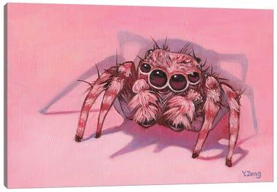 Jumping Spider Canvas Art Print