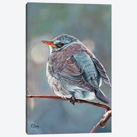 Wild Bird Canvas Print #YZG5} by Yue Zeng Canvas Art