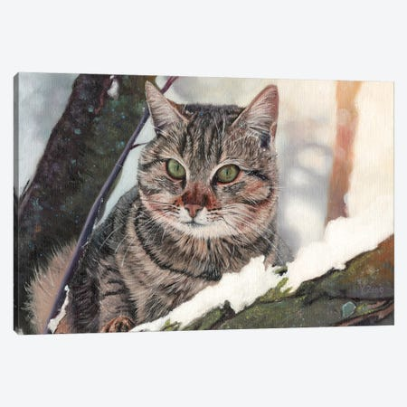 Cat In The Tree Canvas Print #YZG6} by Yue Zeng Canvas Wall Art