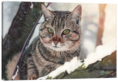 Cat In The Tree Canvas Art Print