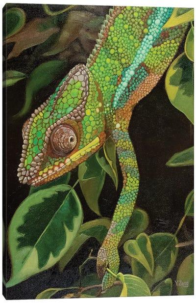 Chameleon Oil Canvas Art Print