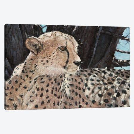 Cheetah Canvas Print #YZG7} by Yue Zeng Canvas Wall Art