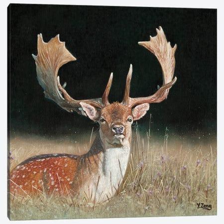 Fallow Deer Canvas Print #YZG9} by Yue Zeng Canvas Art Print