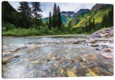 Stream, Rocks, Rushing Water, Glacier National Park, Montana Canvas Art Print