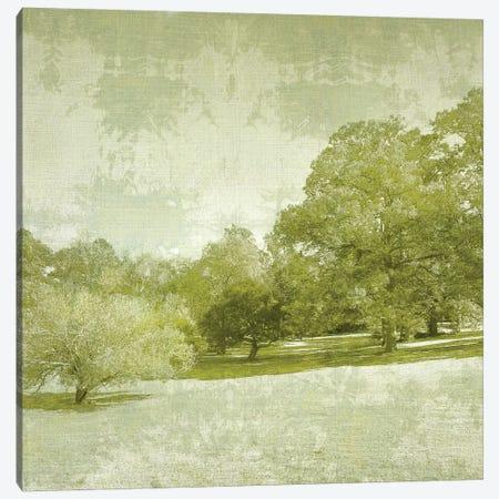 Beryl Landscape  I Canvas Print #ZAR103} by Chariklia Zarris Canvas Art Print