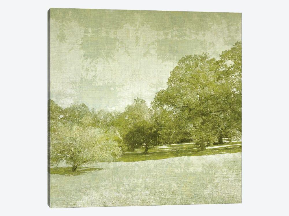Beryl Landscape  I by Chariklia Zarris 1-piece Canvas Art