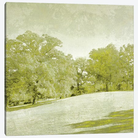 Beryl Landscape  II Canvas Print #ZAR104} by Chariklia Zarris Canvas Art