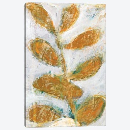 Golden Afternoon II Canvas Print #ZAR114} by Chariklia Zarris Canvas Print