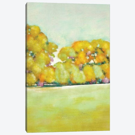 Golden Landscape I Canvas Print #ZAR115} by Chariklia Zarris Canvas Print