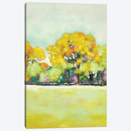 Golden Landscape II Canvas Print #ZAR116} by Chariklia Zarris Canvas Art Print