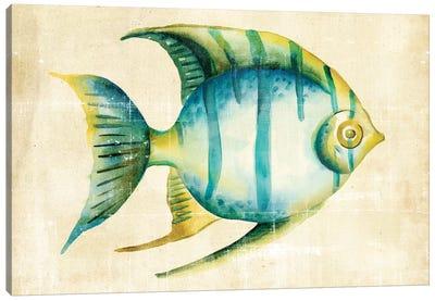 Aquarium Fish I Canvas Art Print