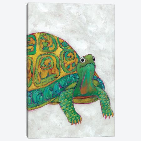 Turtle Friends I Canvas Print #ZAR135} by Chariklia Zarris Canvas Print