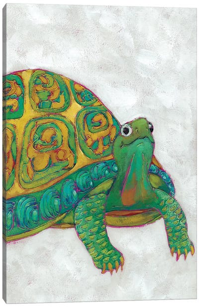 Turtle Friends I Canvas Art Print