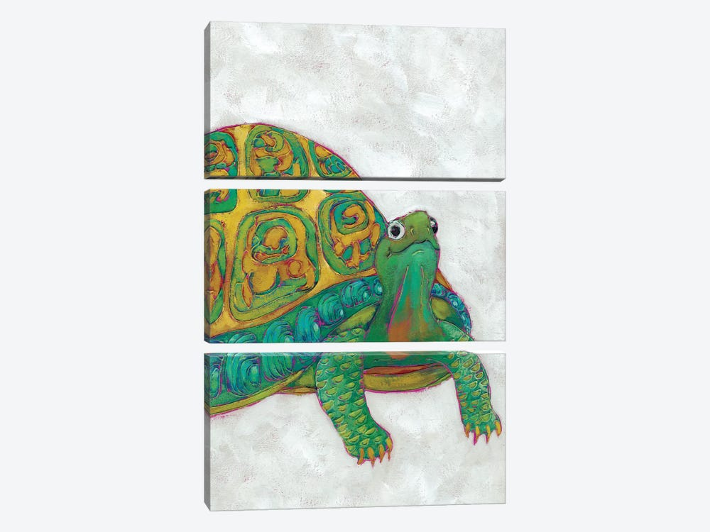 Turtle Friends I by Chariklia Zarris 3-piece Canvas Art Print